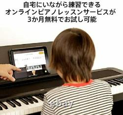 KORG Electronic Piano B2N 88-key Light Touch Keyboard Damper Pedal, Music Stand